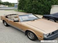 1981 Toyota Celica Convertible